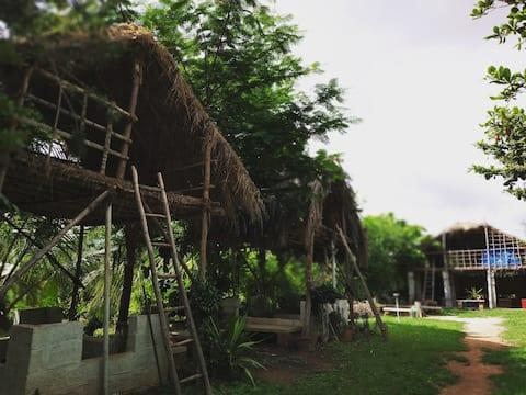 MayaVadi Organic Farm