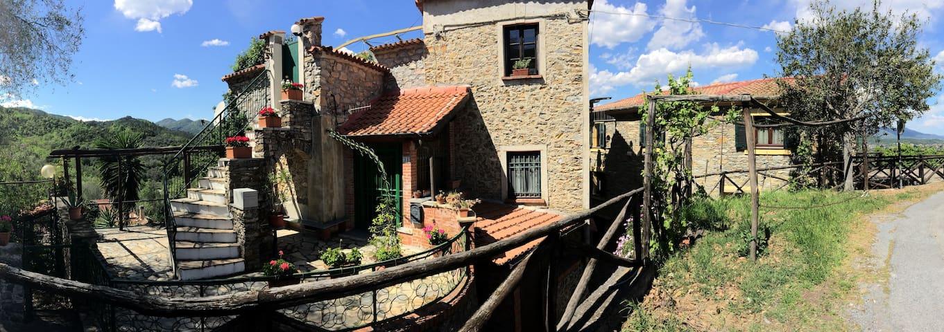 CortoMaltese House  COD. Citra 009030-LT-0001