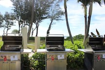 Gas Grills overlooking the ocean