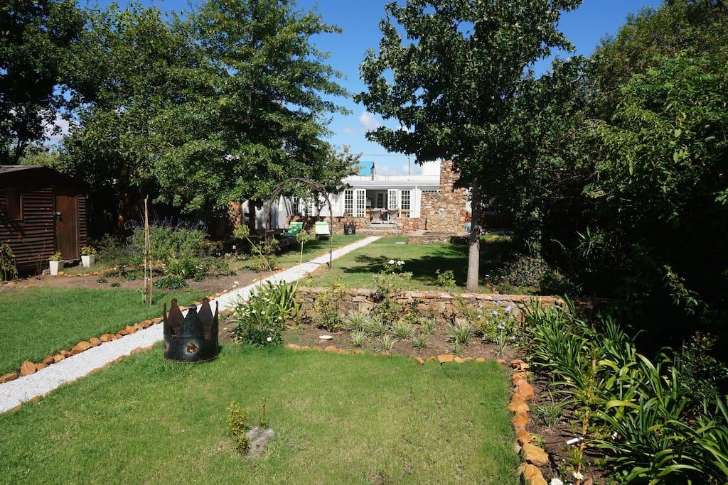 Garden view towards house