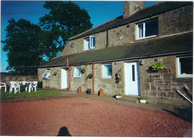 Grandma,s Cottage - Thropton - House