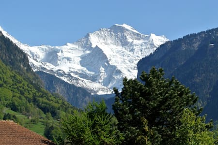 New flat with view to the Top of Europe - Matten bei Interlaken - Lejlighed
