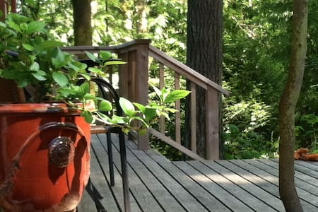 Secluded Cabin in Woods W/Hot TUB (Cabin Fever) - Bainbridge Island