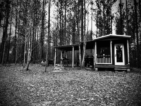 The Hollow: Experience Life Off-grid!