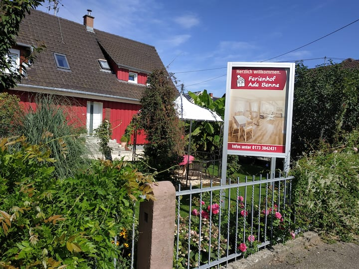 Europapark, Schwarzwald, Vogesen , Rheinauen
