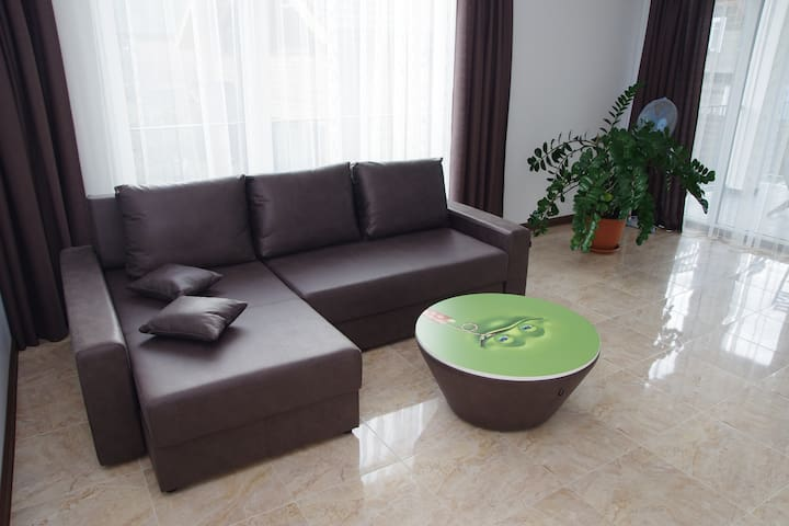 Vacation apartment in Druskininkai center