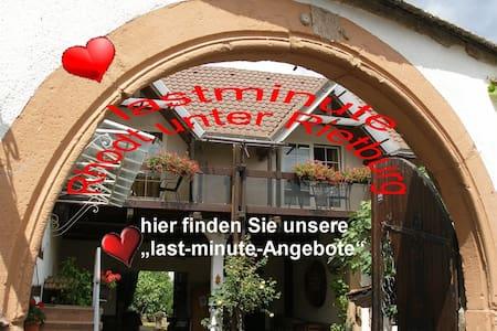 last minute Angebote Rhodt unter Rietburg - Rhodt - Appartement