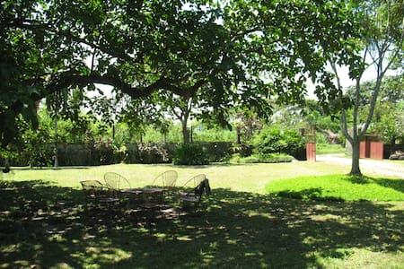 Ancestral Sugarcane Plantation Home - Silay City