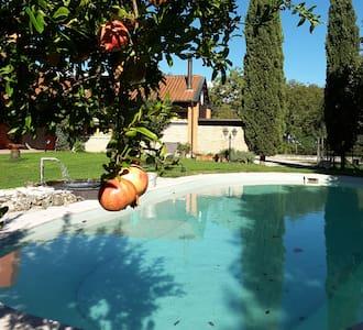 Barchessina agli Olmi - San Biagio di Callalta - Apartamento