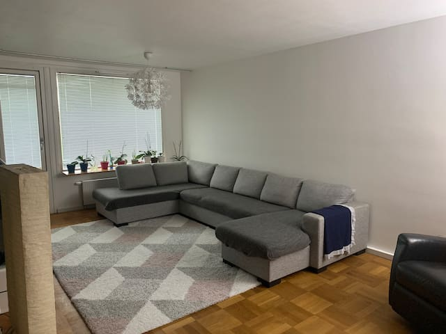 Family apartment near the center and highway (E20)