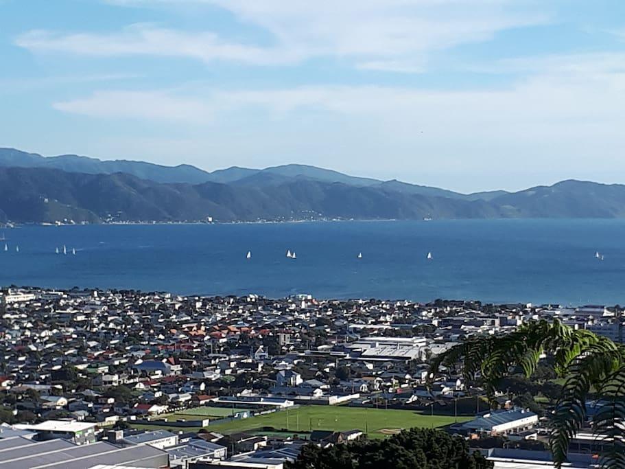 On a sunny Wellington day