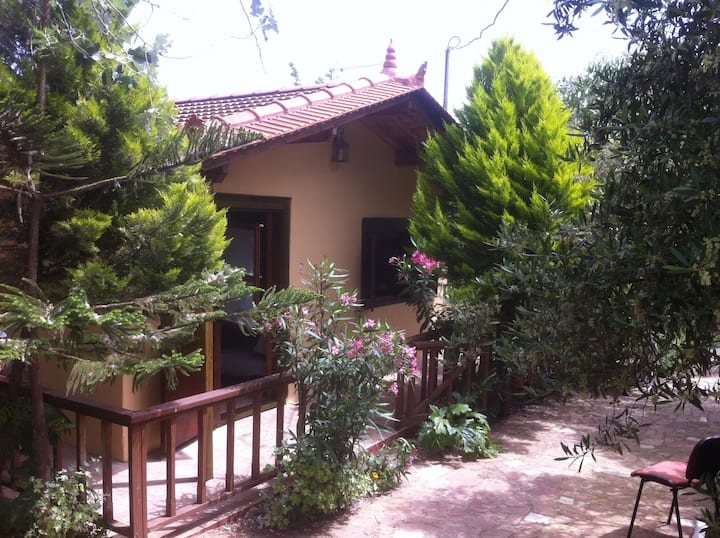 Beautiful wooden house with garden in Kampos