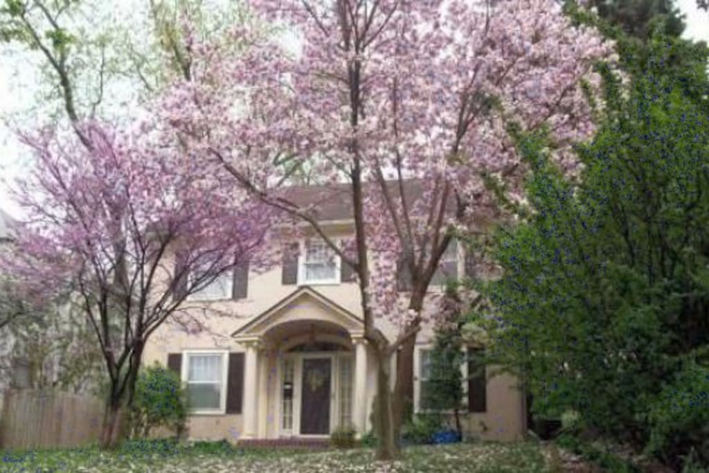 quot dundee quot  private king bedroom houses for rent in omaha  3 bedroom section 8 houses for rent in omaha ne