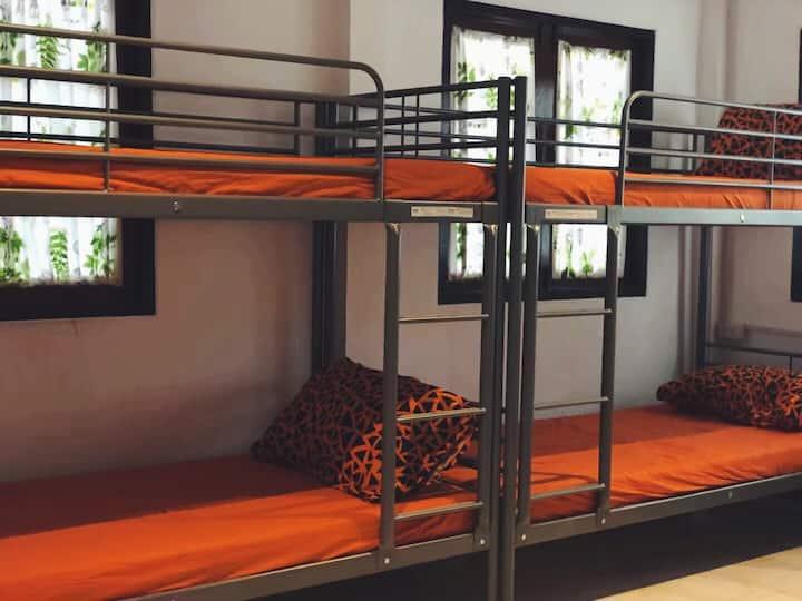 邻近素万那普机场/别墅小院/Pandas Hotel/合住上下铺6人大房间/单个床位