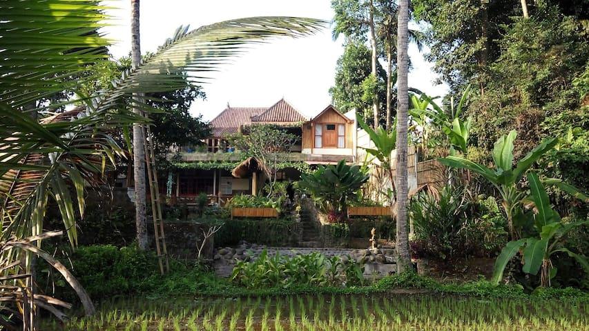 BaliManggis Homestay Dormitory for 8 person max