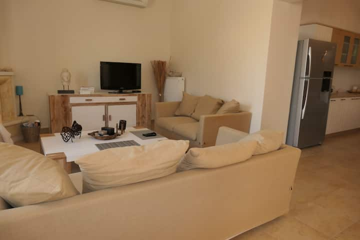 Luxurious Seaside Apartment (Ag Ermioni)