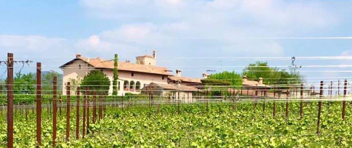 Trilocale - Cazzago San Martino - Apartment