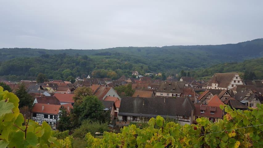 Eichhoffen 2017 (mit Fotos): Top 20 Ferienwohnungen in Eichhoffen ...