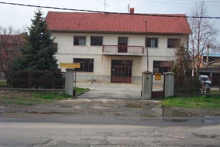 Lestane, Belgrade - Belgrade