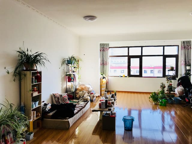 大昭寺商圈小清新公寓一间,可住2人,有阳台可看山景,房东长居拉萨,吃住行购物一条龙服务!