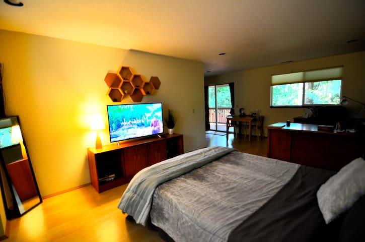"Super comfortable memory foam queen-size bed  with 50"" 4k digital TV."