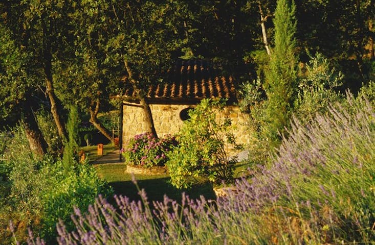 Alberetino - Guest home with breathtaking views