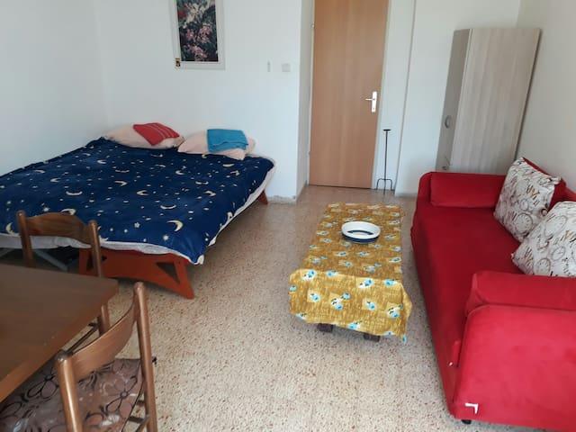 חדר 1 ראשי גדול עם 2 דלתות כניסה שולחן פינת תה  מיטה זוגית ,ספה שנפתחת למיטה  ומיטת יחיד מתאים לזוג או 4 עד 5 אנשים  יכול לשמש  גם כסלון ופינת אוכל