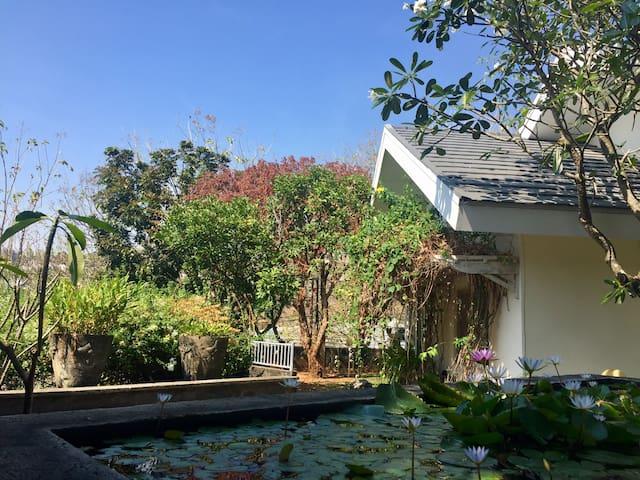 Leyla House Semarang