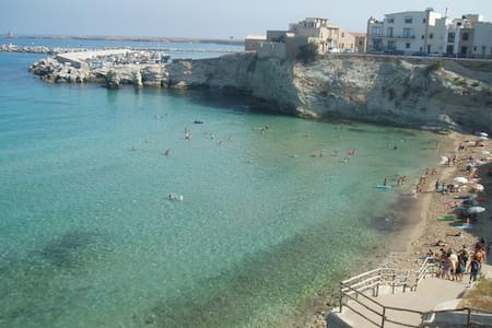 casa vacanze chiara. a due passi dal mare - Terrasini