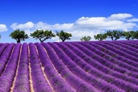 Wonderful villa/swimmingpool next Aix en Provence - Coudoux - Rumah