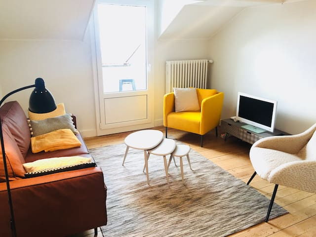Cosy flat close to Lausanne