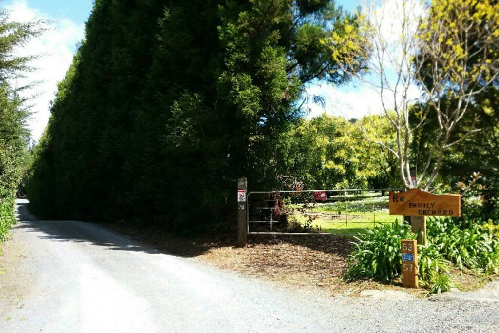 The side gate for orchard staff entrance only