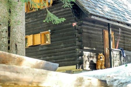 Cosy Cottage on Pokljuka for 6 - Zgornje Gorje - 牧人小屋