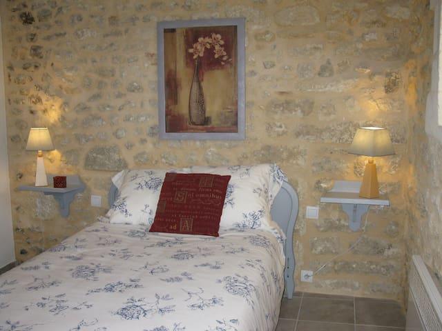 Gîte de Charme au Calme - Saint-Martin-Lacaussade - Apartamento