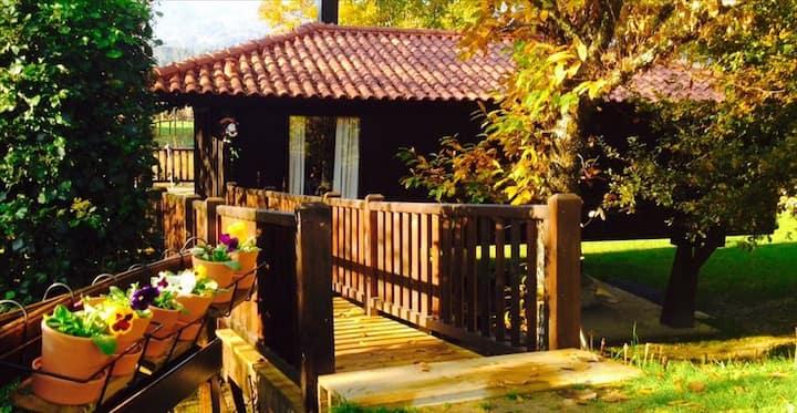 Treehouse -  Paque Nacional P- Geres, Sistelo