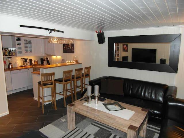 Tollnes, sentralt Skien/Porsgrunn - Skien - Apartment