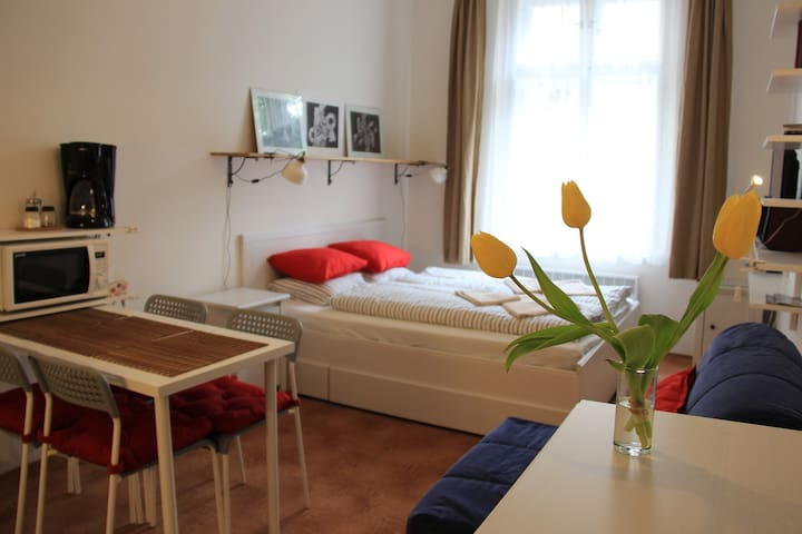 Cozy studio near Prague Castle - Praha - Leilighet