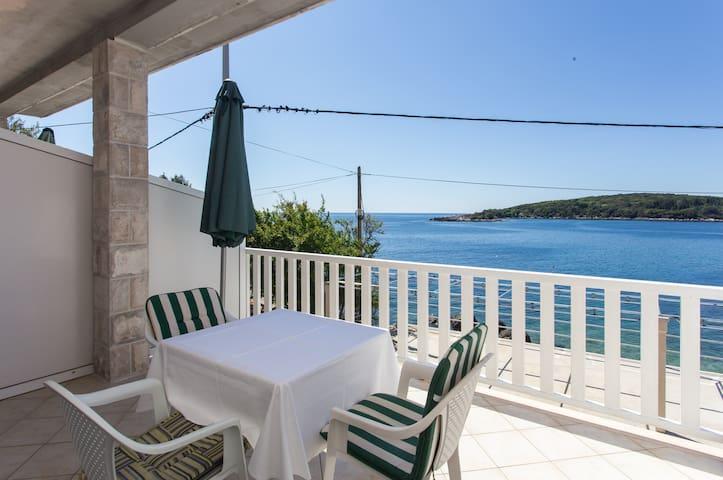 House Rašica -One Bedroom Apt,Terrace & Sea View
