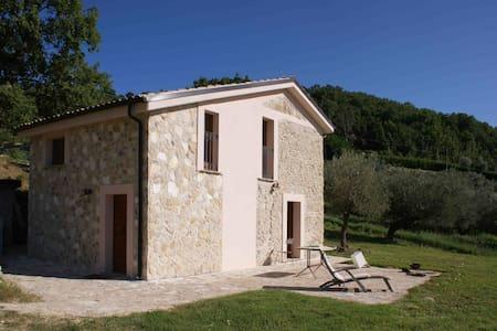 Casolare rustico nell'oliveto - Carpineto della Nora