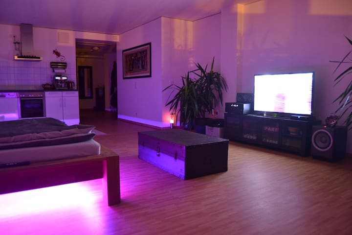 Generous flat in the city center - Frankfurt am Main - Pis