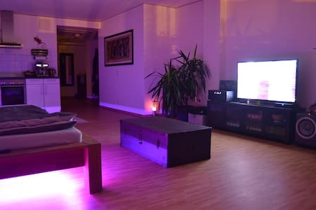 Generous flat in the city center - 法蘭克福 - 公寓