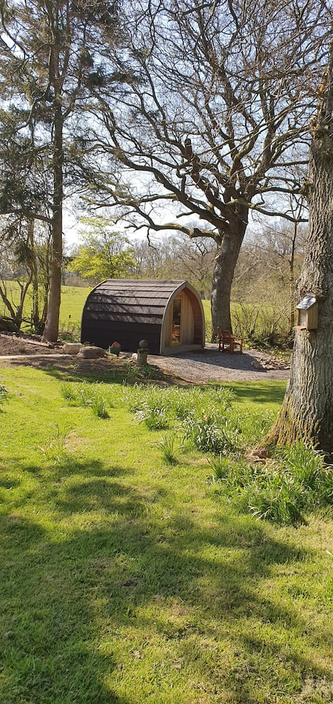 A one off secluded retreat set in  woodland garden