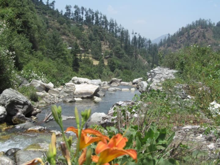 Rock Top Inn Jibhi in pure nature