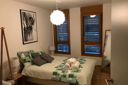 Business and leisure ready bedroom with parking - Sion - Leilighet