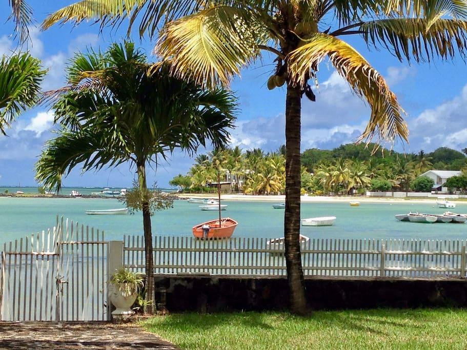 View from the verandah / vue de la varangue