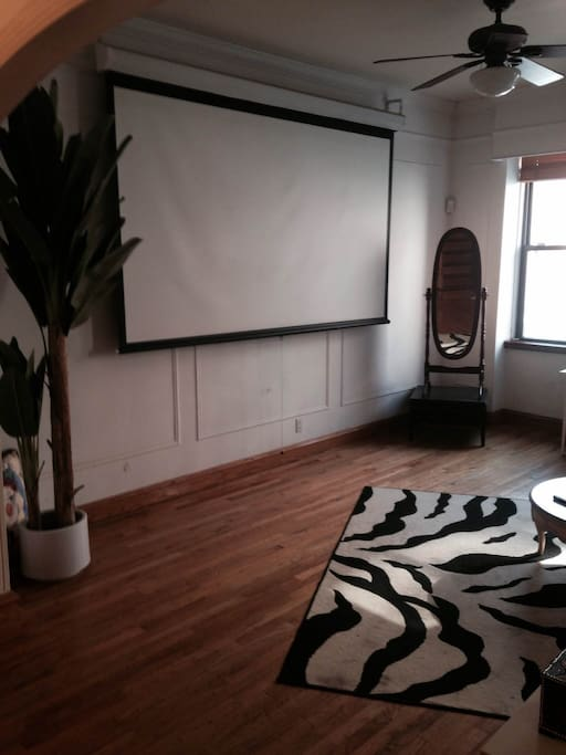 pull down projector TV in living room