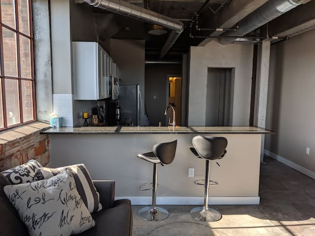 Downtown Davenport Industrial Modern 1 BR Unit #2