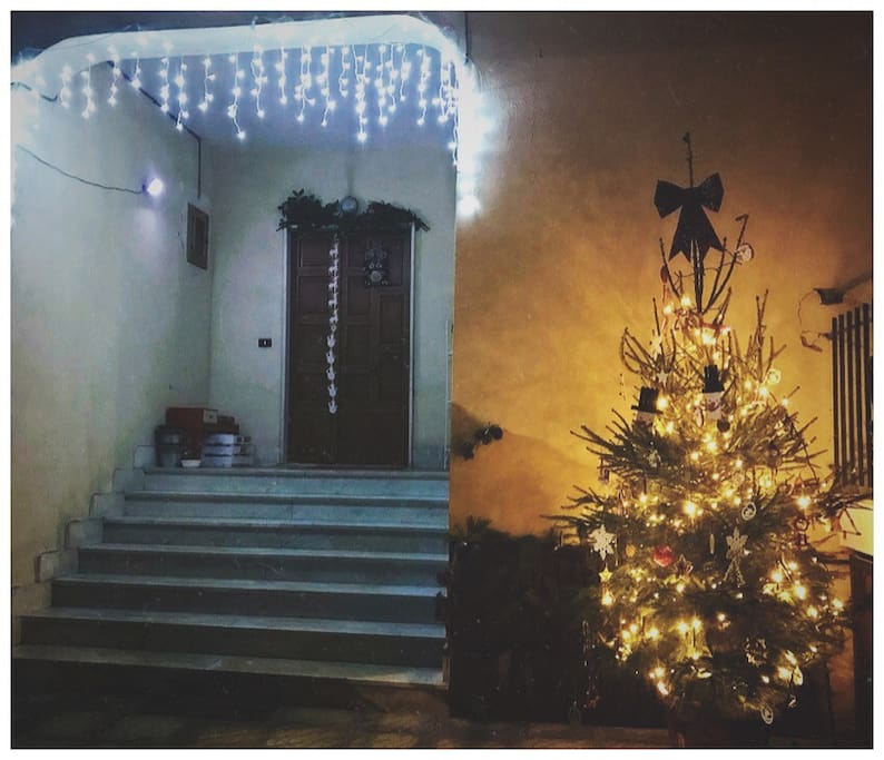 Christmas  is coming!! Come to visit Us!!