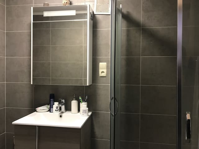 2 modern rooms in the very center of kiev !