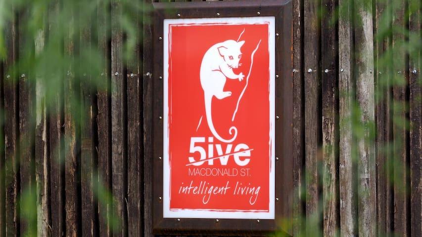 Intelligent Living- 5 MacDonald St,   R1